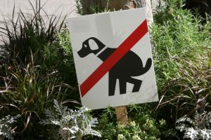 prohibidas las cacas de perro