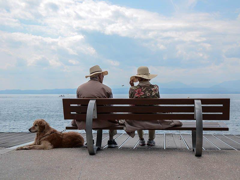Razas de perros para gente mayor