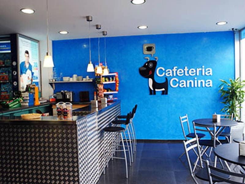 Cafetería canina en Barcelona