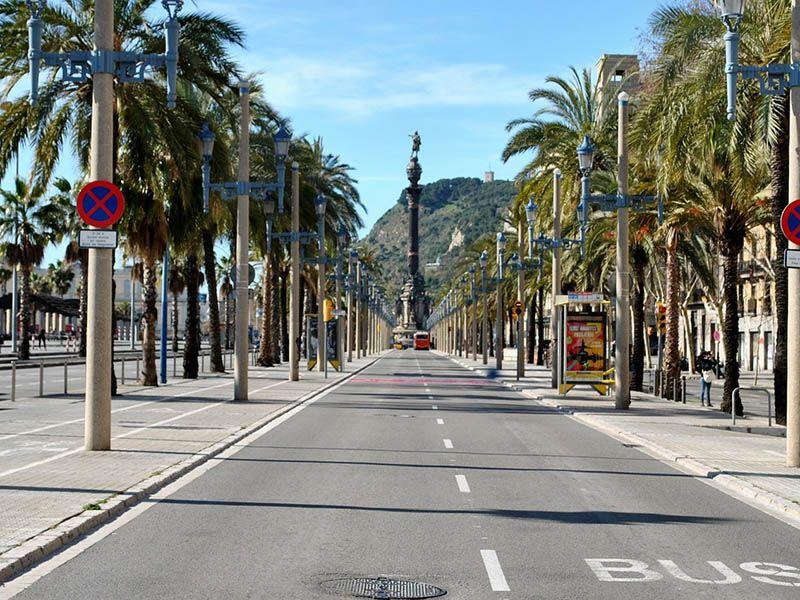 Lugares para pasear con perros en Barcelona