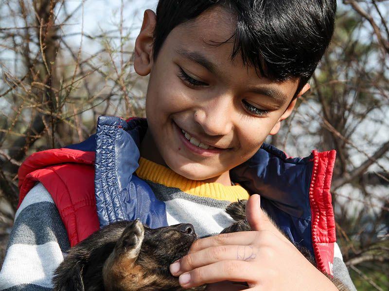 El secreto de la convivencia entre niños y mascotas