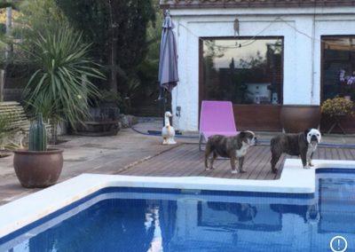 hotel-canino-fontfreda-4