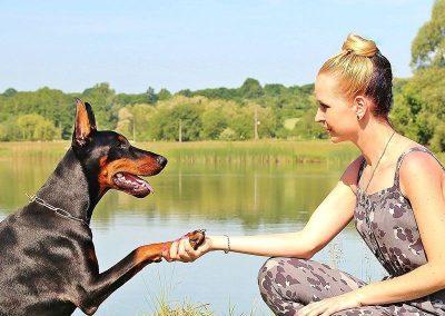 socializar-perro