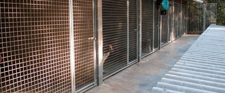 instalaciones exterirores caninas