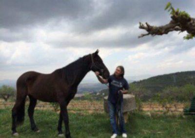 luis-caballo-andaluz