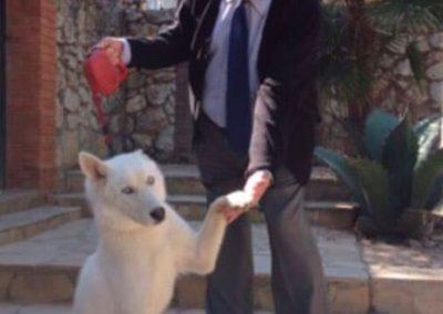recepcion-perro-con-dueno